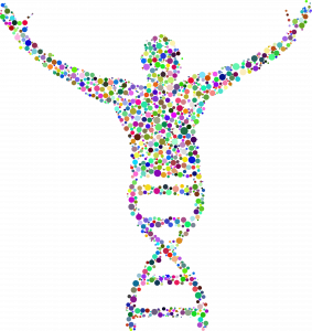 DNA strand forms a person