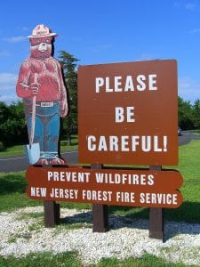 Smokey the Bear analogy prevent fire of inflammation