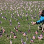 American Flags representing lives lost due to COVID-19